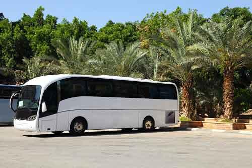 השכרת אוטובוסים לטיולים